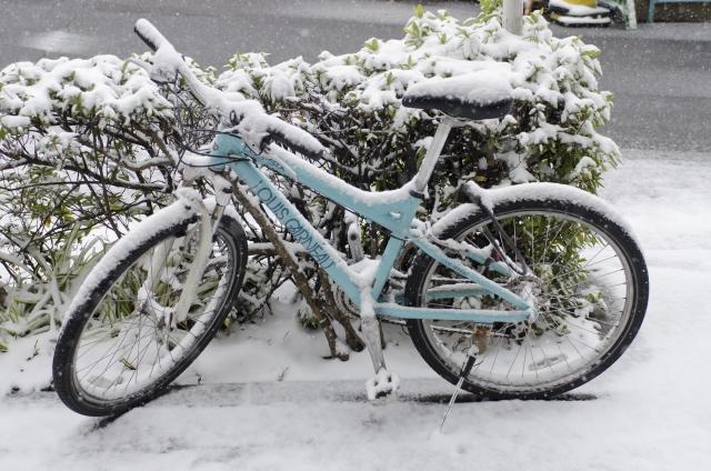 霜よけにはなりますが、全く雨よけにならない