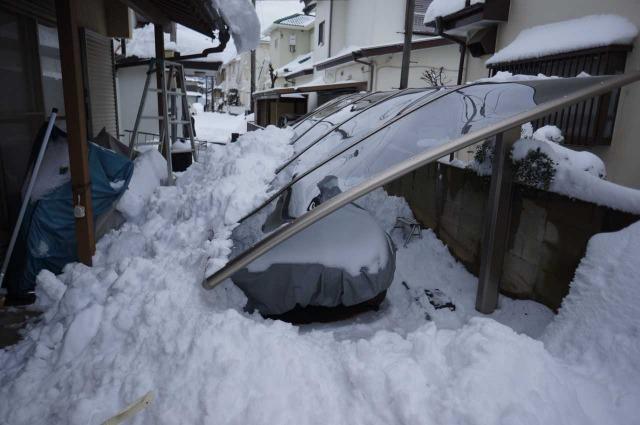 詳しい積雪強度は地元の業者さんに聞く必要がある