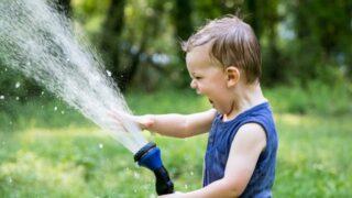 絶対に、水はかけるな!かけるなよ!