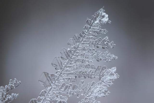 フロントガラスの霜対策は、カーポートが効果バツグン